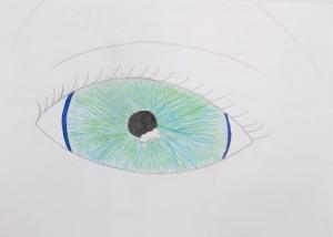 Drawing the Eye / gr. 6