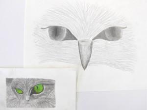 Drawing the Eye, pencil