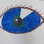 Drawing an Eye / Gr.6
